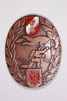 Abzeichen Bronze
